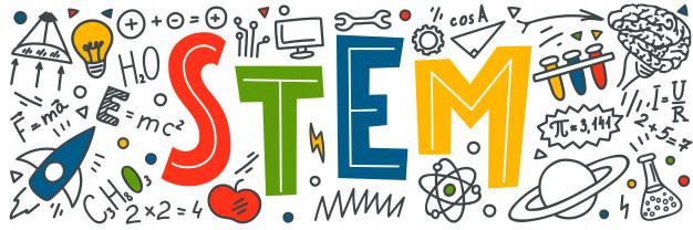 Phương pháp giáo dục Montessoria và STEM khác nhau như thế nào