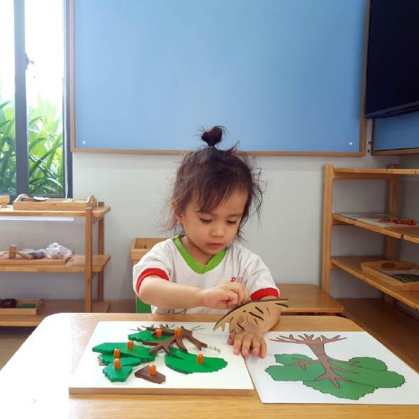Phương pháp giáo dục mầm non Montessori