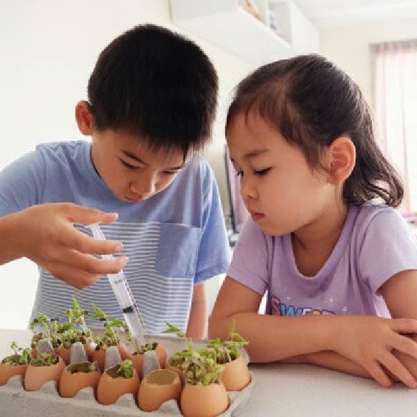 Phương pháp giáo dục Montessori là gì