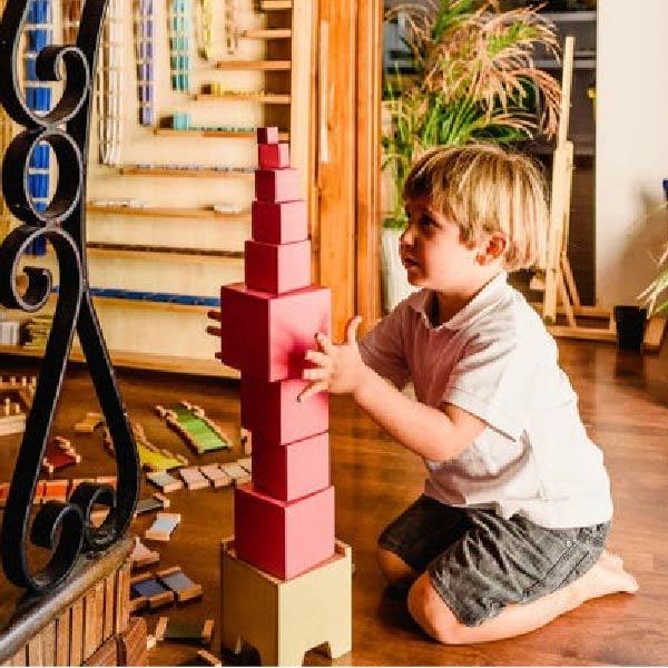 Montessori Việt Nam: Làm thế nào để áp dụng hiệu quả?