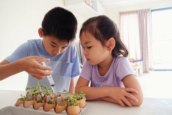 Phương pháp giáo dục Montessori là gì? Tại sao lại được ưa chuộng?