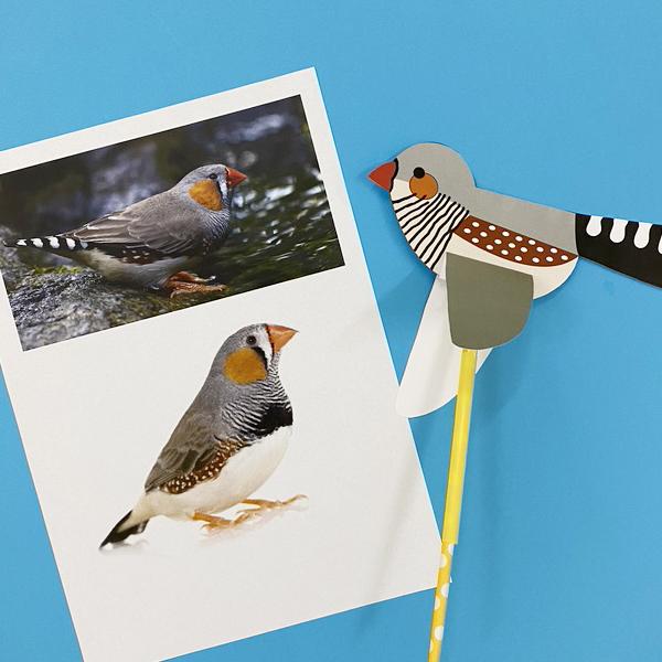 Cách xếp hình chim bằng giấy đơn giản (Có file giấy mẫu kèm theo)