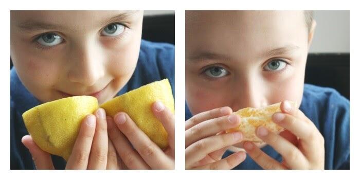 Tận hưởng hương vị tuyệt vời của các loại trái cây nào!