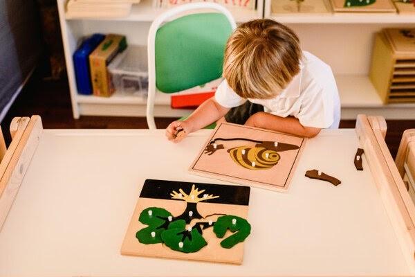 Mô hình giáo dục giúp trẻ tự do khám phá