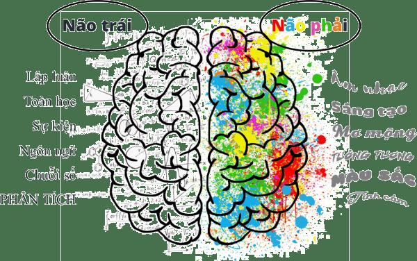 Phương pháp dạy trẻ dựa trên hoạt động của 2 bán cầu não