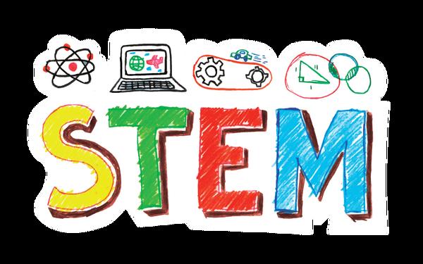 STEM Việt Nam và những điểm nổi bật