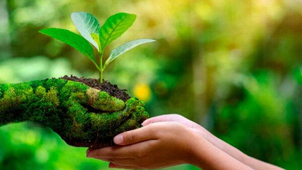 Bé chung tay bảo vệ môi trường