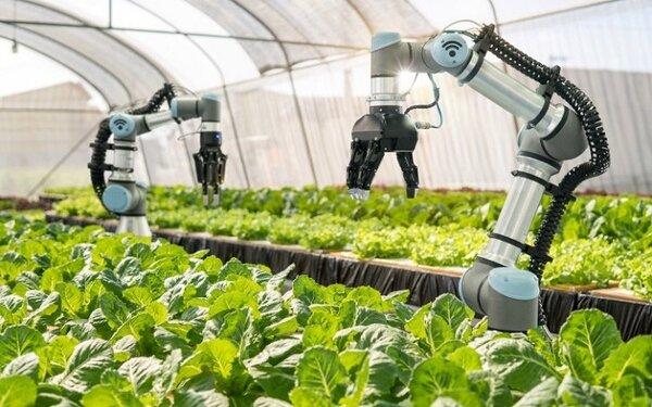 Nông nghiệp ứng dụng STEM trong tương lai