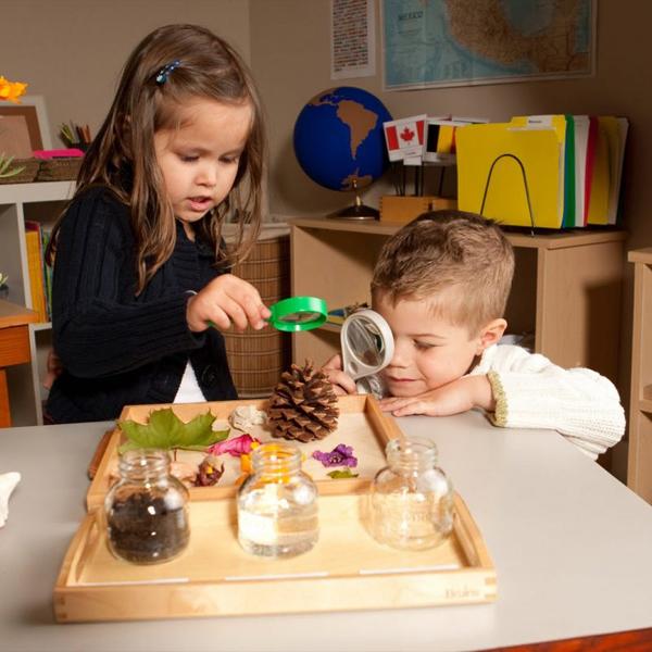 Thiết kế giáo án Montessori đạt chuẩn